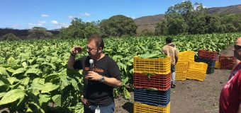Trip To Tabacalera Perdomo – Part Two of a Three Part Series by Mr. Jonathan